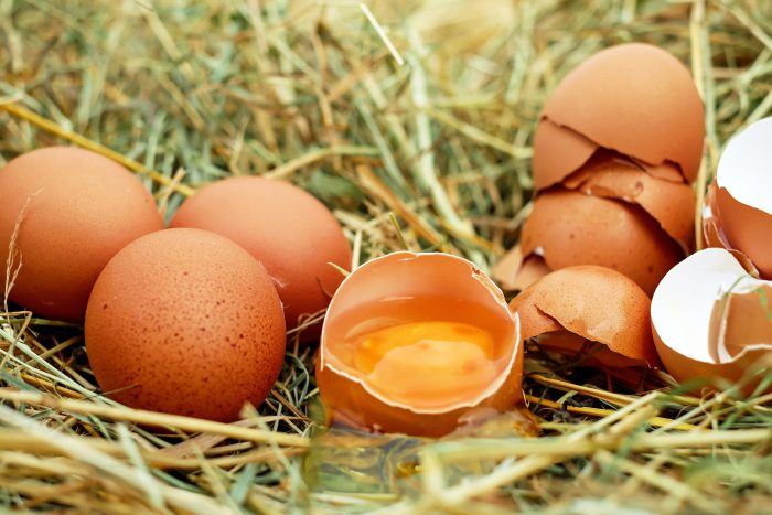 a collection of brown eggs with one broken open. The yolk is exposed in a patch of hay